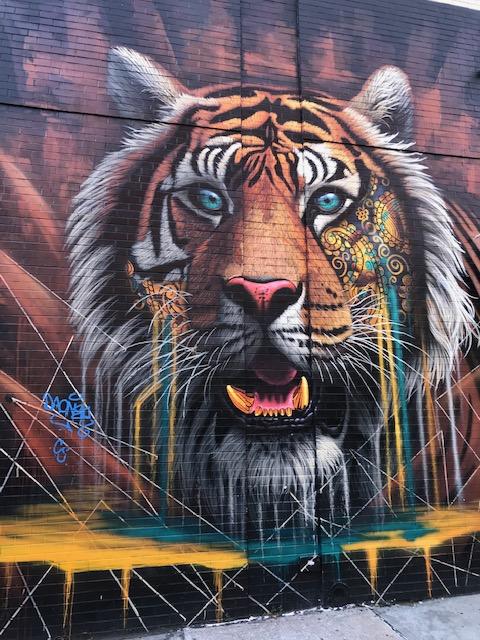 NYC Tiger Graffiti